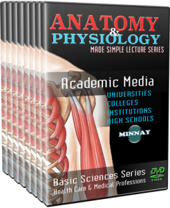 Anatomy and Physiology DVDs —dvd4learning